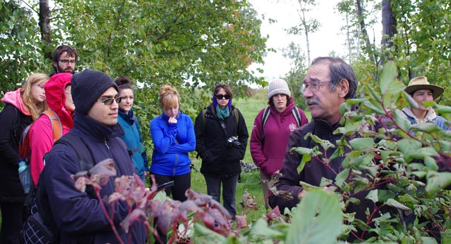 Pic River's Raphael Moses shared the healing properties of red willow (dogwood) with a group of Lakehead University students during his Sept. 21 medicine walk to the top of Mount McKay in Fort William First Nation.