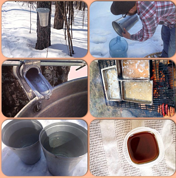 making syrup