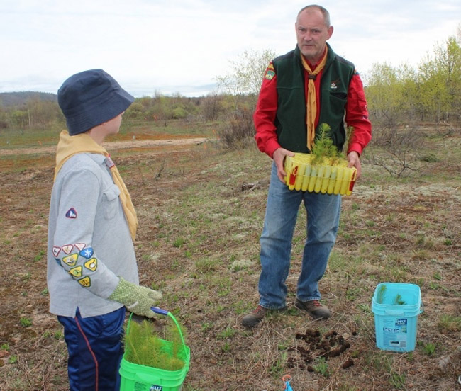 Scout leader Neal Mclean fills the pails for the Scouts with saplings for them to plant.