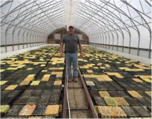 Darrin Bellerose, the Greenhouse Manage in Thessalon